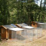 Casette per cani riscaldate con l'energia solare