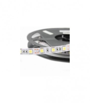 5 METRI STRISCIA 300 LED 5050 SMD PER INTERNO IP20 12 V DC PREMIUM SERIES