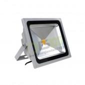Faro LED 50W 220V 5000K Luce Fredda in Alluminio IP65