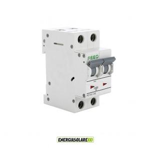 Interruttore Automatico Magnetotermico 25A 2P per Corrente Alternata