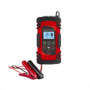 Caricabatterie per batterie AGM AC220V 50Hz DC 12V (4A/6A/8A) 24V (4A)