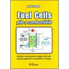libro Fuel Cells