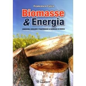 """Libro """"Biomasse & Energia"""""""