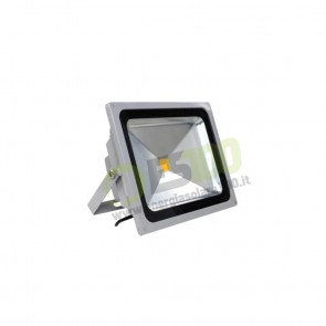 Faro LED 30W 220V 5000K Luce Fredda in Alluminio IP65