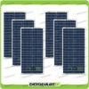 Set 6 Pannelli Solari Fotovoltaici 30W 12V multiuso Pmax 180W Baita Barca